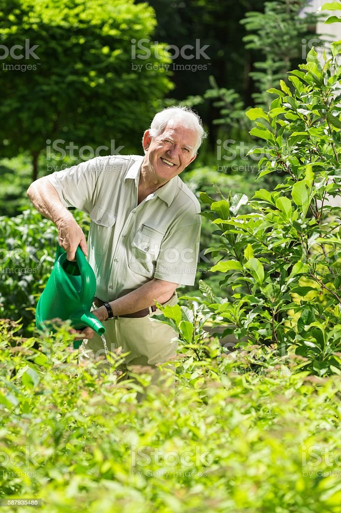 Man with a watering can stock photo