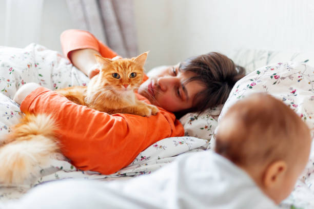 Man with baby and ginger cat in bed. Cute cozy home background. Morning bedtime. Smiling father with little son. stock photo