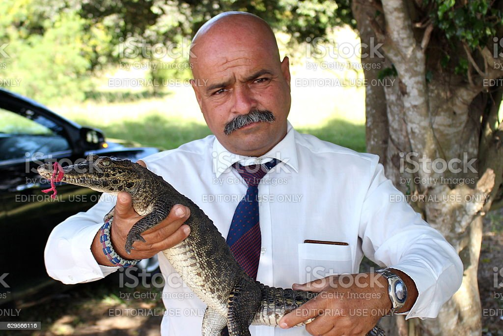 Man with baby crocodile stock photo