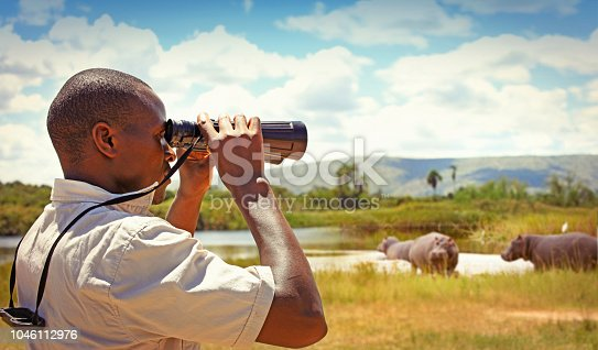 Park ranger with binoculars watching hippos in the Akagera national park