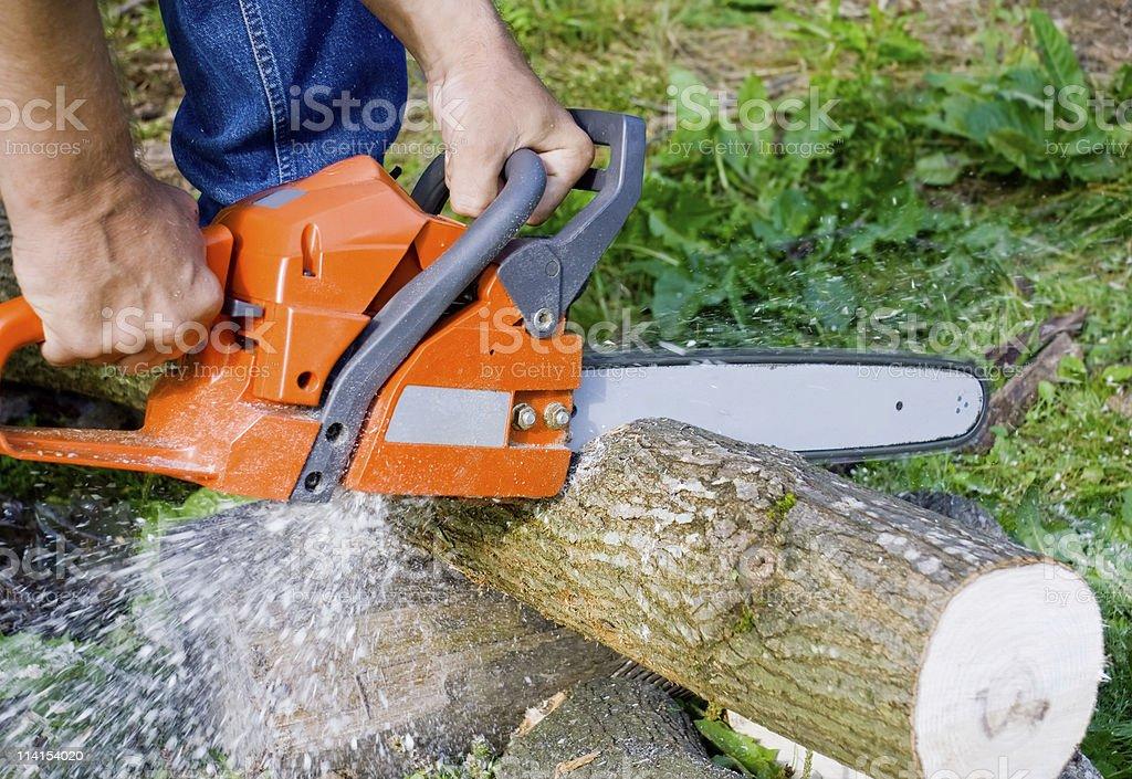 Man with chainsaw royalty-free stock photo