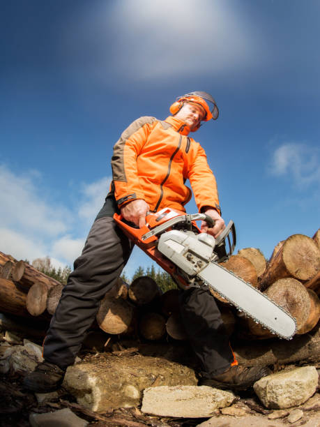 man with chainsaw - chainsaw stock photos and pictures