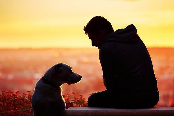 Man with dog at the sunrise picture id490726514?b=1&k=6&m=490726514&s=612x612&w=0&h=0cqtnn9yows gxm8kd0z5gnbbgts7kvja3vl9jp5exc=