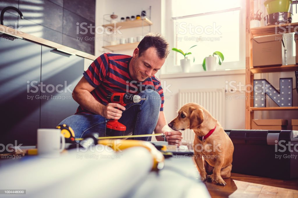 Man with dog building kitchen cabinets and using a cordless drill stock photo