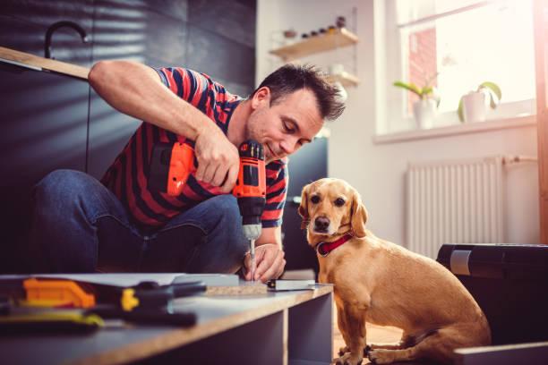mann mit hund küchenschränke erstellen und verwenden ein akku-bohrschrauber - hundezubehör diy stock-fotos und bilder