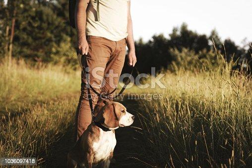 Man with dog enjoying nature