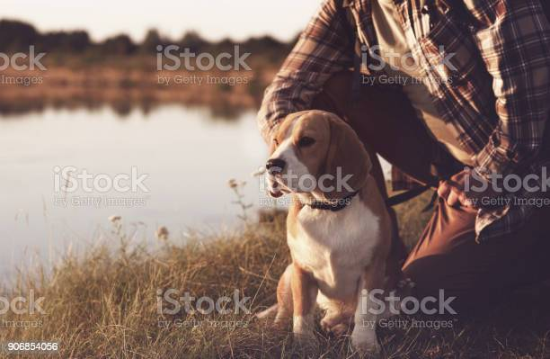 Man with dog enjoying nature picture id906854056?b=1&k=6&m=906854056&s=612x612&h=clhg lcinoip9a4x1mqaplpwrczdtq6th3stezgxtpe=