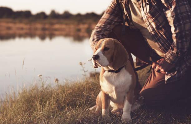 Mann mit Hund Natur genießen – Foto