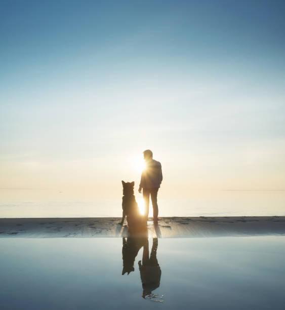 Man with dog friend on the beach picture id669520302?b=1&k=6&m=669520302&s=612x612&w=0&h=4o9j bpaptladvbpdp h29yrydl pwyscgirpqosnxm=