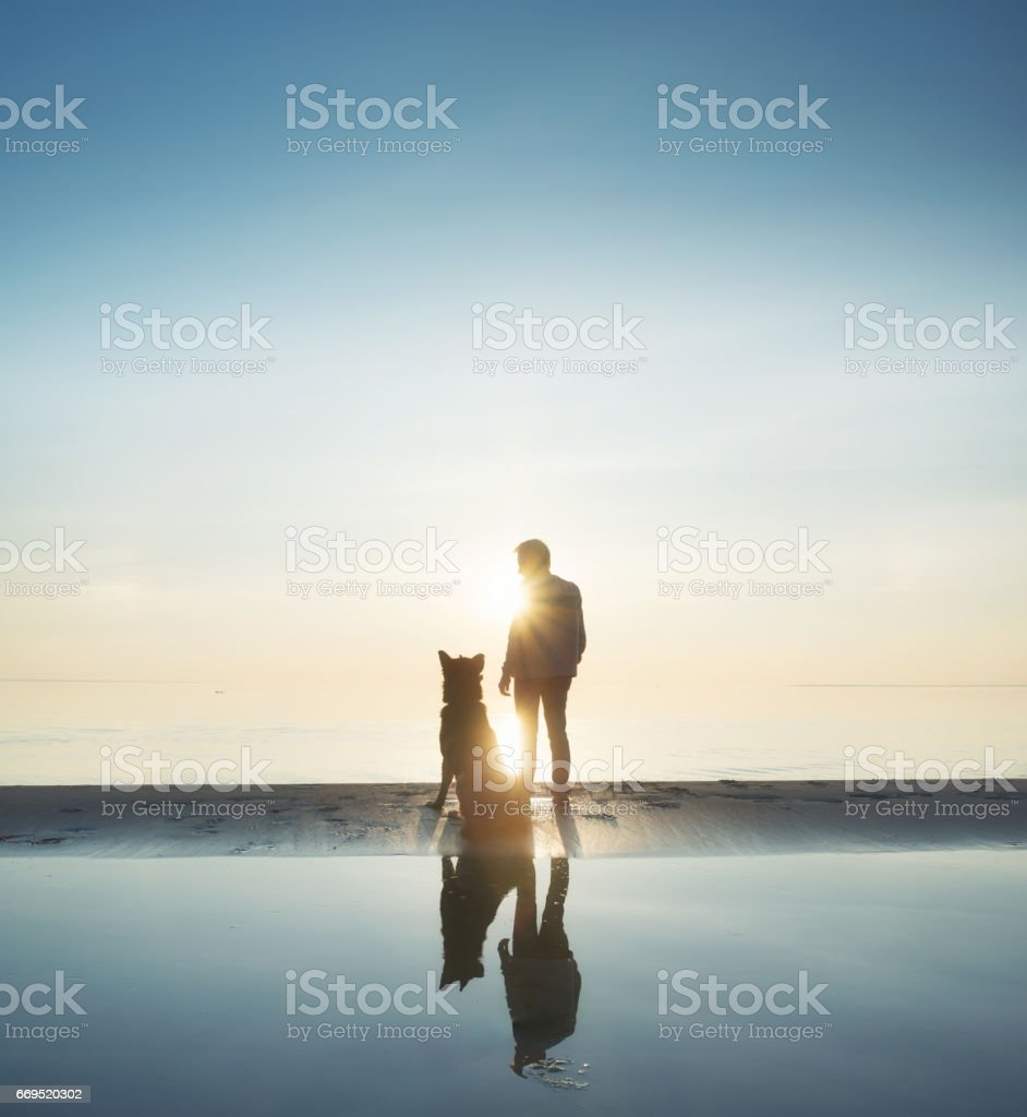 Man with dog friend on the beach stock photo