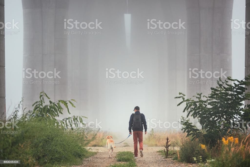 Man with dog in mysterious fog stock photo