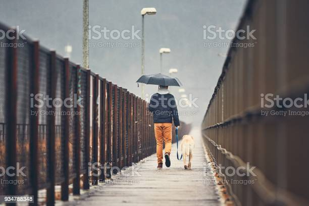 Man with dog is walking in rain picture id934788348?b=1&k=6&m=934788348&s=612x612&h=9xmxo3yjyhagtwr fvwvs2qroo b4cgw sodz gbpna=
