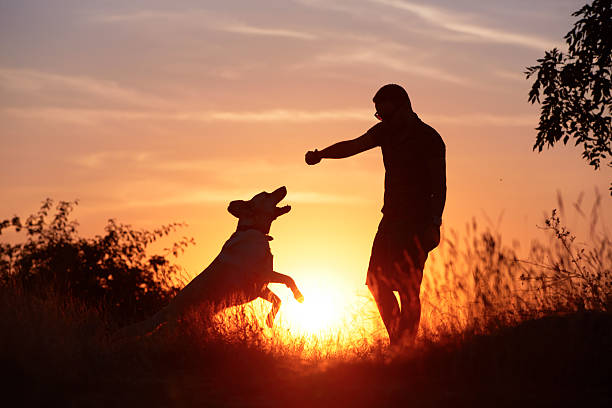 Man with dog picture id466989589?b=1&k=6&m=466989589&s=612x612&w=0&h=u8y3l0xrkqsif7t4s3mzrvtmxdmw4m1qgo5gxrld8ug=