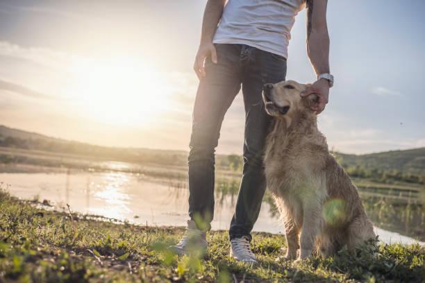 Mann mit Hund – Foto