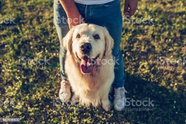 Man with dog picture id942596830?b=1&k=6&m=942596830&s=612x612&h=ltcs0mqkbfdgmapxyvlv63i02xadajzupjaiktutbl8=