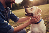 istock Man with dog 942616490