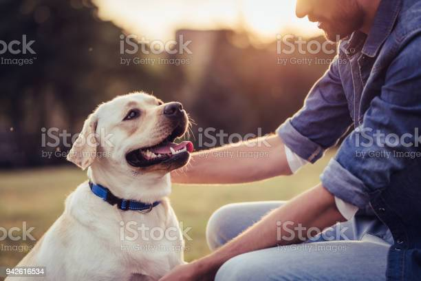 Man with dog picture id942616534?b=1&k=6&m=942616534&s=612x612&h=eu7hvltydxxxit830uqc9znqh2rq0qyq27l4ikzg84w=