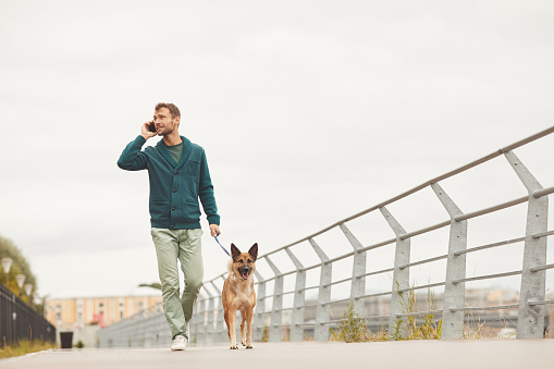 Man with dog walking in the city