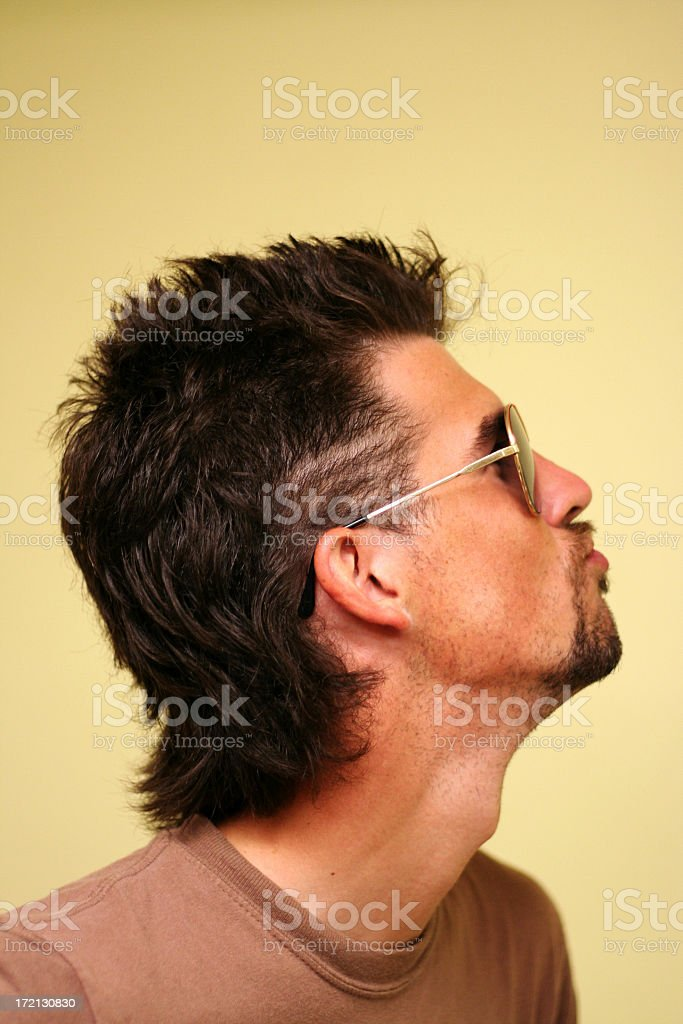 Man with goatee, mullet, and aviators stock photo
