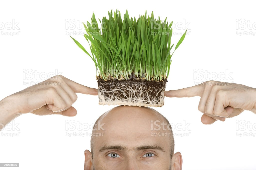 Man with grass for hair royalty-free stock photo