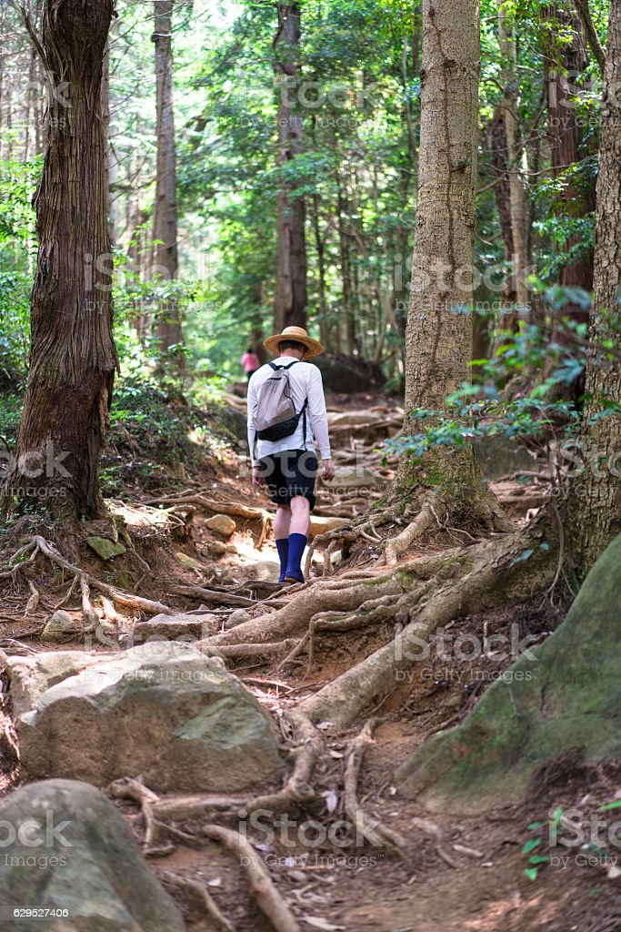 Man with hat on Shirakumobashi trail on Mount Tsukuba, Japan stock photo