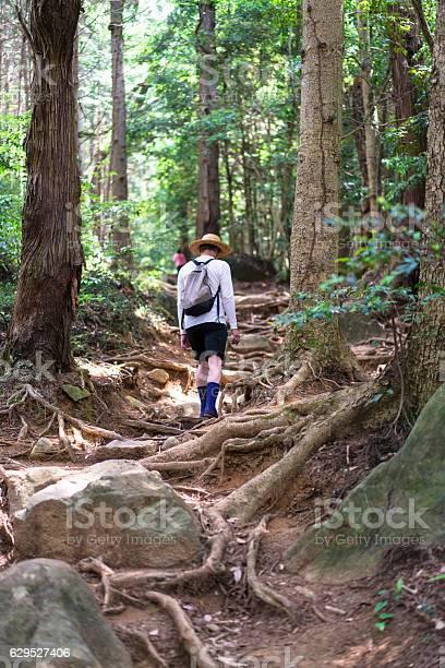 Man with hat on Shirakumobashi trail on Mount Tsukuba, Japan