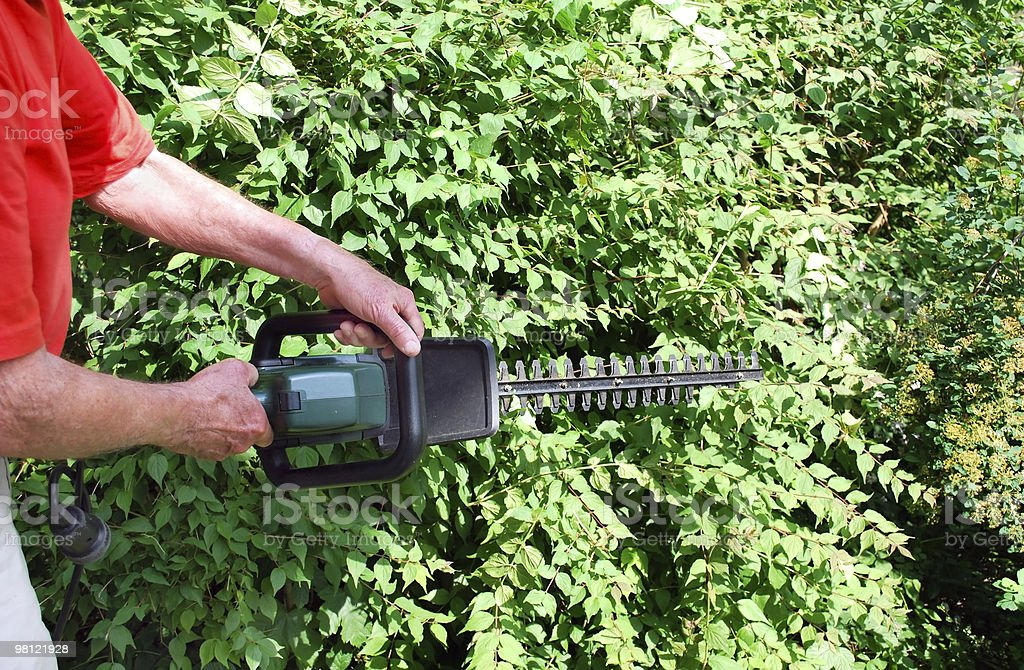 man with hedge trimmer royalty-free stock photo