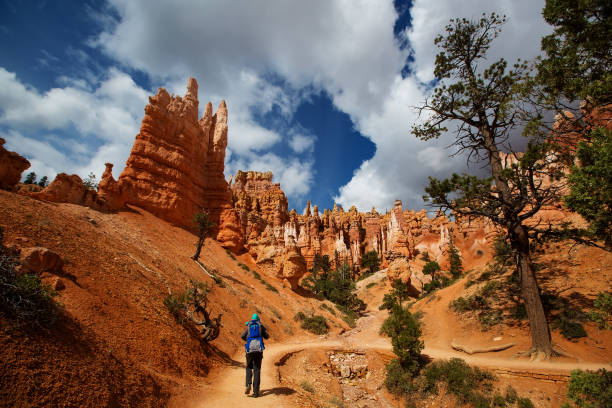 een man met zijn babyjongen zijn wandelen in bryce canyon national park, utah, vs - bryce canyon national park stockfoto's en -beelden