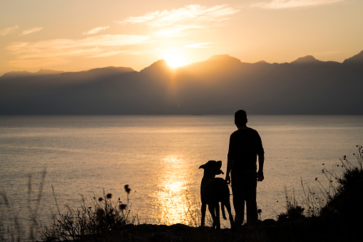 Man with his dog at sunset