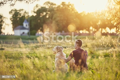 Rear view of young man with dog (labrador retriver) in nature at sunset.