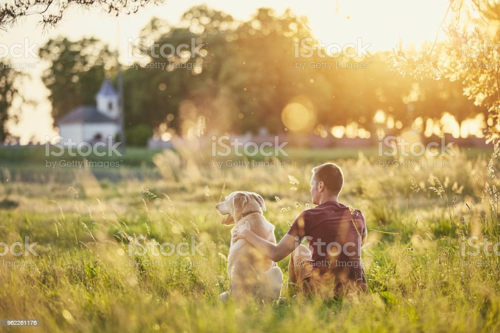 Man with his dog at sunset stock photo