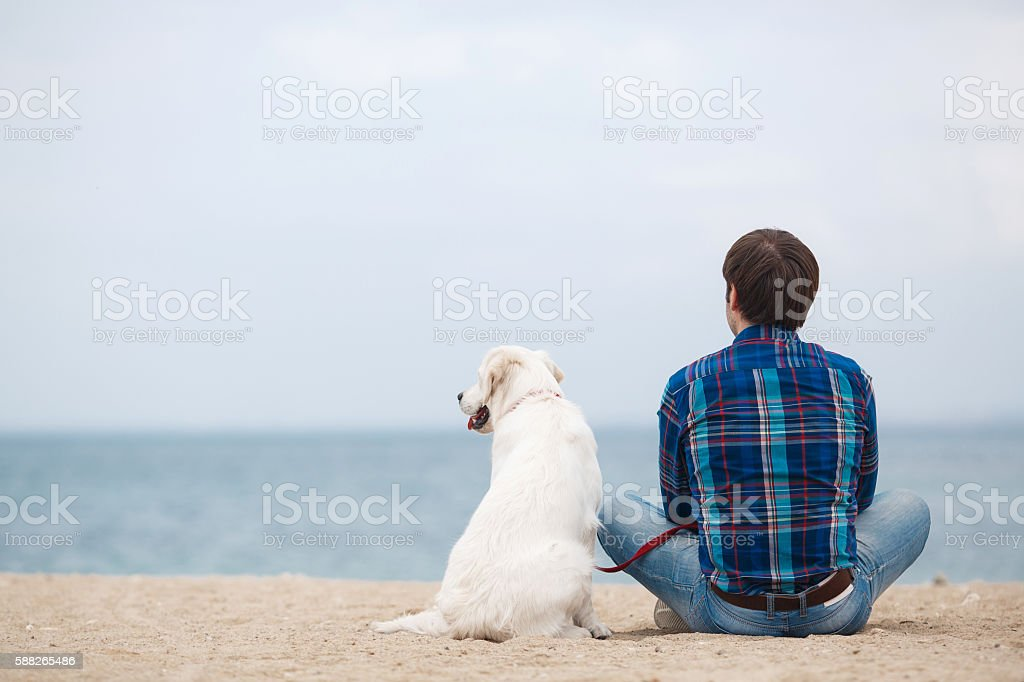 Man with his dog on the beach in the spring stock photo