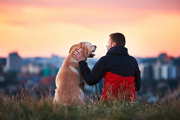 uomo con il suo cane - fedeltà foto e immagini stock