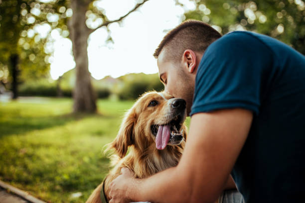 Man with his dog public park picture id1134950495?b=1&k=6&m=1134950495&s=612x612&w=0&h=rsavbfrwx37ygvpuwtta2wf15igjdosyesxpo9fvrnk=