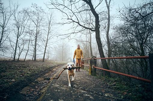 Man with his dog walking on sidewalk in fog
