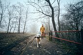Young man with his dog walking sidewalk in public park in fog. Playful labrador retriever holding stick in mouth in frosty day.