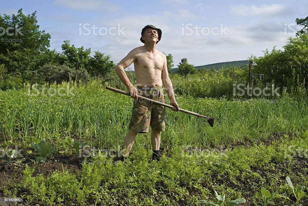 Man with Hoe royalty-free stock photo