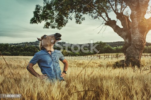 Man with horse head mask in a vaste field