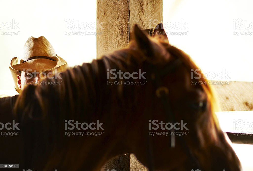 Man with horse in barn royalty free stockfoto