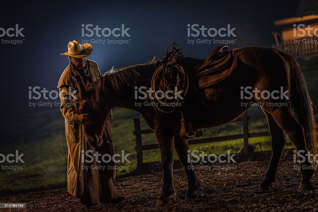 Man with horse stock photo