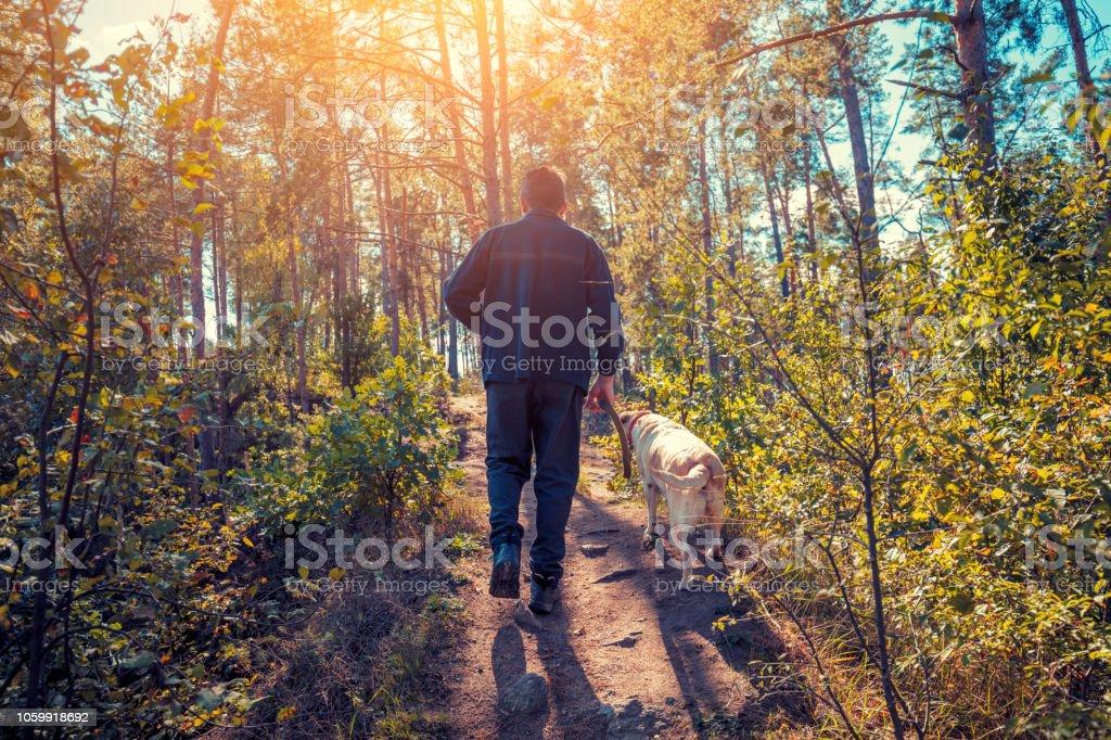 Ein Mann mit Labrador Retriever Hund Wandern in den Wald im Herbst – Foto