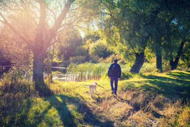 Man with labrador retriever dog walking near the lake in the park picture id1054792308?b=1&k=6&m=1054792308&s=612x612&w=0&h=iymzgygtudqzd8yhsdj1eh3vtqh067zzgxkif3myeqk=