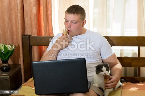 958492394 istock photo Man with laptop and funny cat eating ice cream cone in the bed 958492726