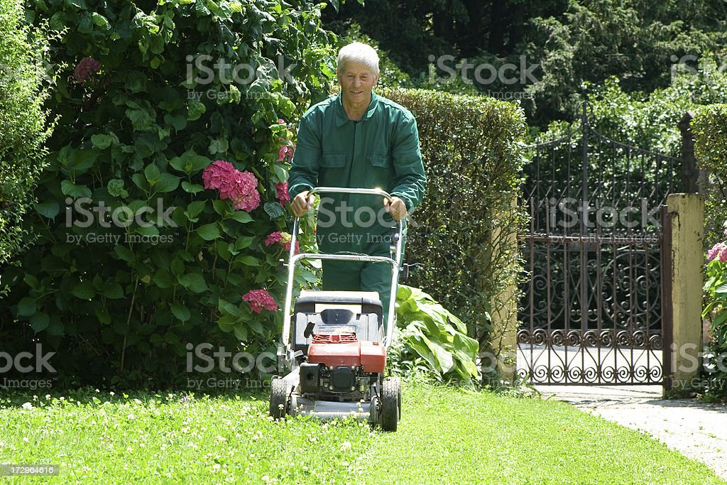 Man with lawn mower royalty-free stock photo
