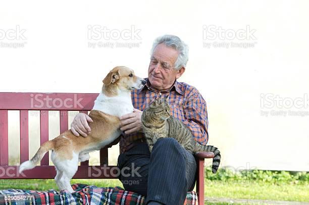 Man with pets picture id529054277?b=1&k=6&m=529054277&s=612x612&h=lgw4md6pfhl25h0zo3i31efzulpafg tnhyu0ggzyme=