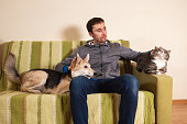 istock Man with playful dog and cat on sofa at home 1266463569