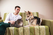 istock Man with playful dog and cat on sofa at home 1266463602