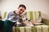 istock Man with playful dog and cat on sofa at home 1266463610