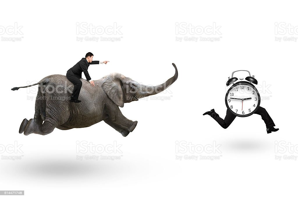 Man with pointing finger riding elephant running after alarm clo stock photo