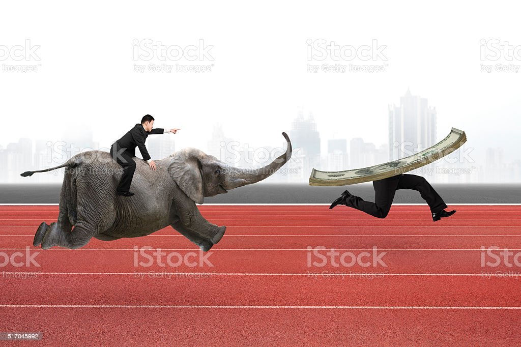 Man with pointing finger riding elephant running after money stock photo